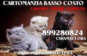Consulti di Cartomanzia 899280824